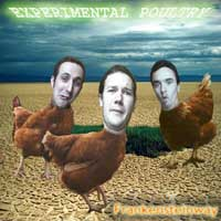 Experimental Poultry album cover